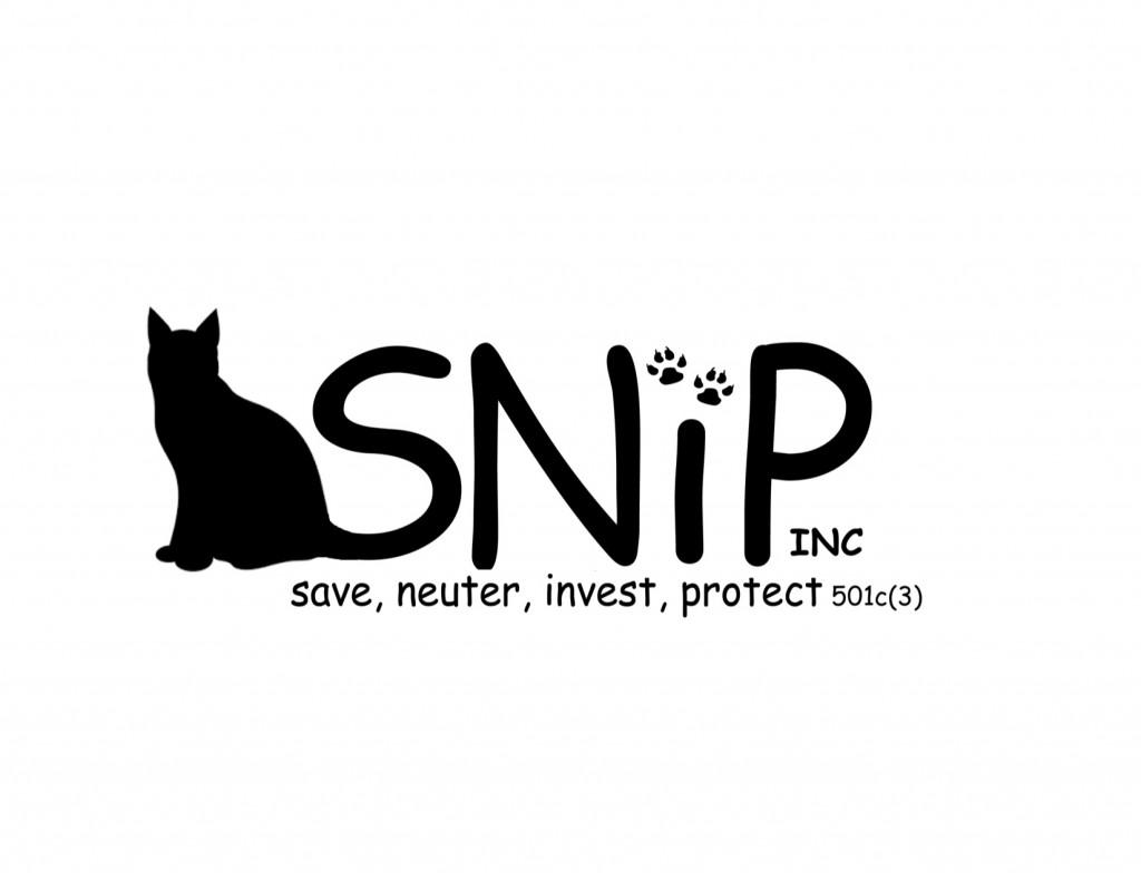 SNIP centered PDF1